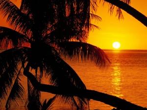 Sol visto desde la orilla