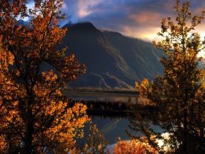 Pico Pioneer (Alaska)