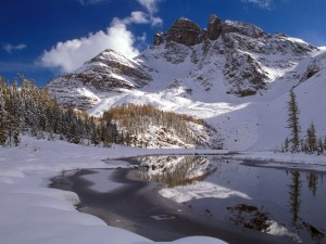 Invierno en un paraje natural