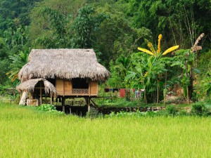 Aldea rural en Vietnam
