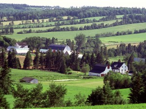 Casas en el campo