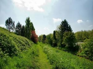 Sendero verde
