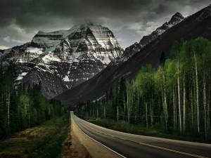 Largo camino a la montaña