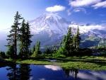 Bonita vista del Monte Rainier (Washington)