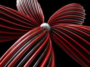 Flor roja y negra