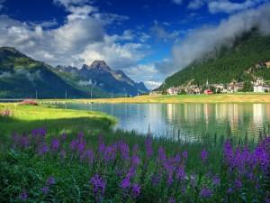 Pueblo y flores a orillas de un río