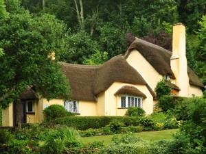 Hermosa casa rodeada de grandes árboles