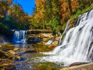 Corrientes de agua caen al río