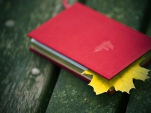 Hoja otoñal entre las páginas de un libro