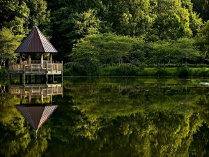 Gazebo reflejado en el estanque