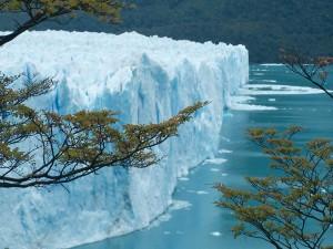 Vista de un glaciar