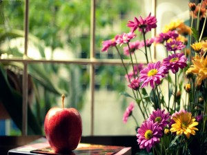 Margaritas y una manzana junto a una ventana