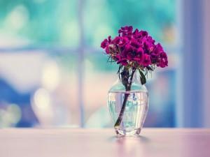 Florecillas en un jarrón