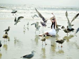 Chica sentada en una playa entre gaviotas