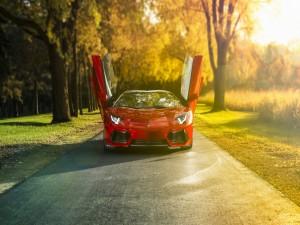 Lamborghini Aventador con las puertas abiertas en una carretera campestre