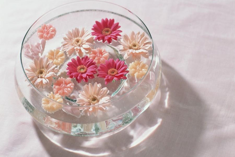 Gerberas en un recipiente de vidrio con agua