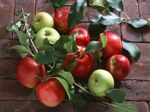 Manzanas rojas y verdes