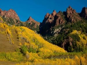 Bosque en otoño bajo las montañas