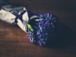 Ramo de jacintos