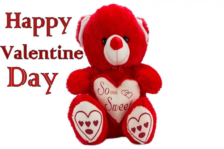 Oso de peluche junto a una felicitación para San Valentín