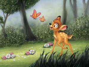 Bambi observando a las mariposas