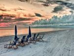 Hamacas y sombrillas en una playa