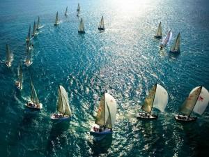 Competición de veleros