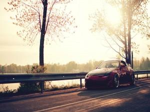 Nissan 350Z parado en la carretera