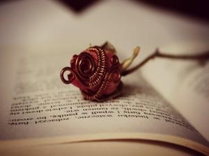 Rosa sobre las páginas de un libro