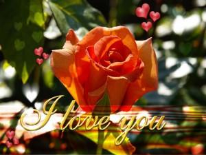 Declaración de amor (Te amo)