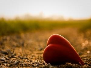 Corazón sobre la tierra