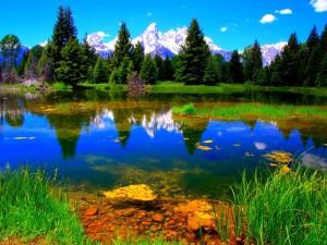 Estanque con aguas transparentes bajo las montañas