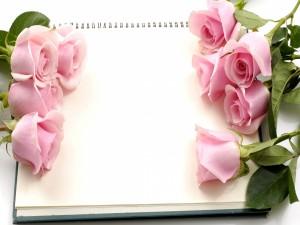 Rosas sobre un bloc de notas