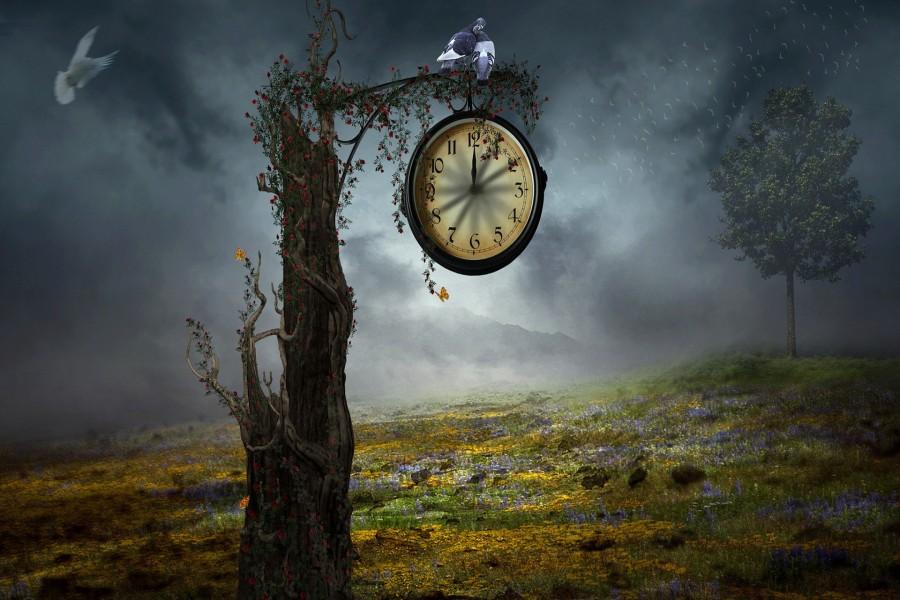 Árbol solitario con un reloj que indica la medianoche