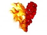 Medio corazón en llamas
