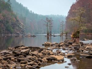 Rocas y árboles en el cauce del río