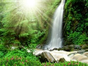 Los rayos del sol iluminan la belleza de la cascada