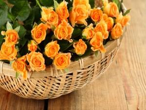 Rosas amarillas en una cesta