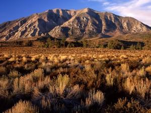 Montañas en California