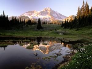 Montaña reflejada en un pequeño lago