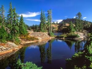 Lago rodeado de rocas y árboles