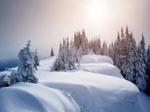 Precioso paisaje invernal