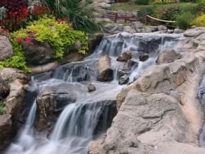 Riachuelo de agua cristalina cruzando por el jardín