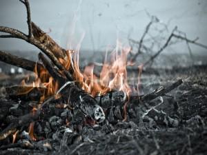 Naturaleza en llamas