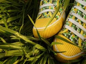Zapatillas de deporte sobre la hierba