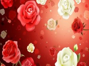Tapiz con rosas color blanco y rojo