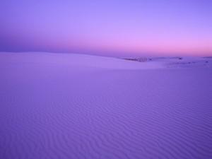 Amanece en el desierto