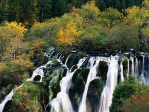 Cascada cayendo entre rocas y árboles