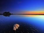 Amanecer reflejado en marea baja