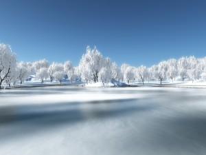 Hermoso paisaje blanco